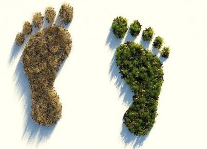 ecological-footprint-4123696__480